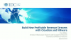 IDC Webinar: How SPs Can Build Profitable Revenue Streams with Storage Services