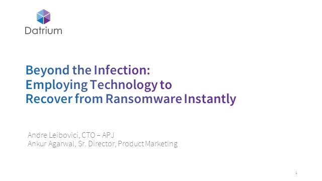 Beyond the Infection: Employing Technology to Recover from Ransomware Instantly