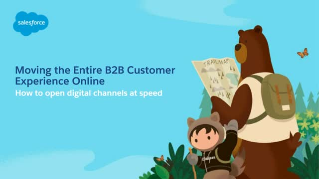 Moving the Entire B2B Customer Experience Online