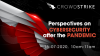 Perspectives on cybersecurity after the pandemic