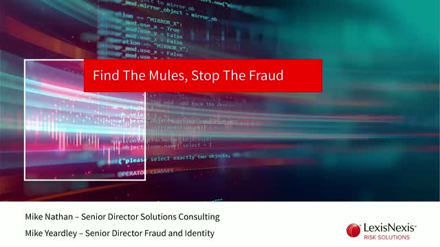 Find the Mules, Stop the Fraud