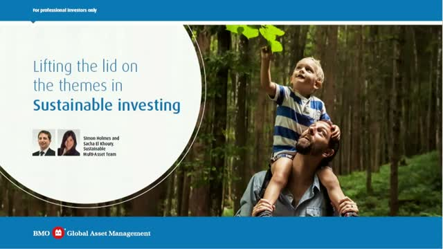 Lifting the lid on the themes in Sustainable Investing