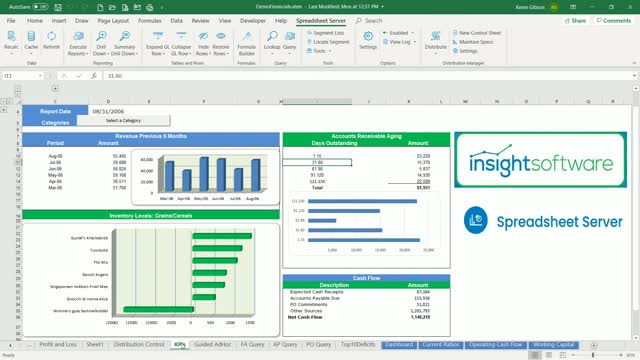 Empower Your Remote Finance Team with Excel Based Reporting