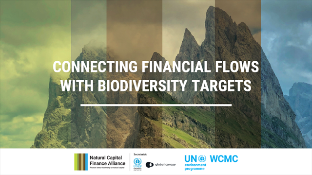 Connecting Financial Flows with Biodiversity Targets