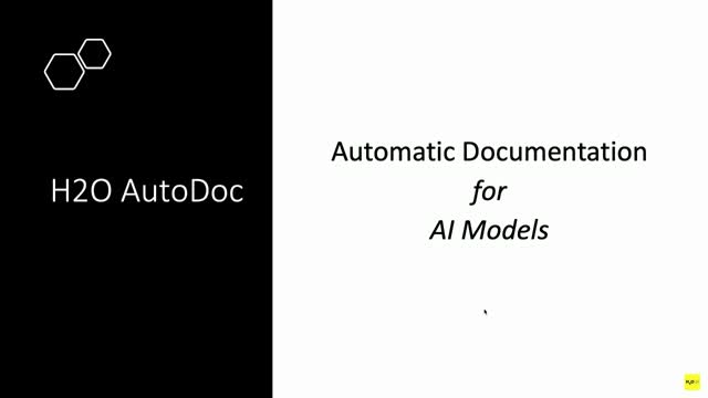 Automatic Model Documentation with H2O