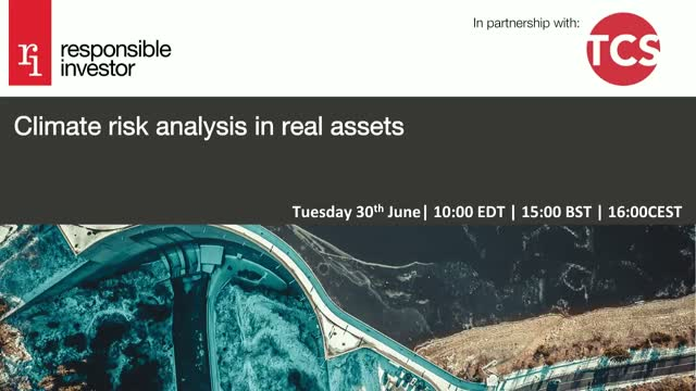 Climate risk analysis in real assets