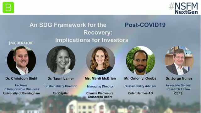 An SDG Framework for the Post-COVID19 Recovery: Implications for Investors