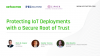 Protecting IoT Deployments with a Secure Root of Trust
