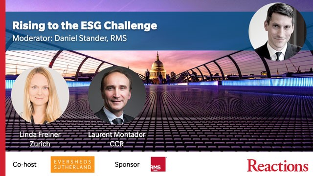 Panel: Rising to the ESG challenge