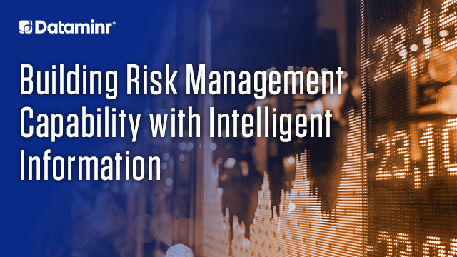 Building Risk Management Capability with Intelligent Information