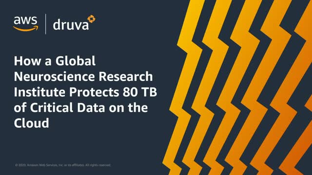 How a Global Neuroscience Research Institute Protects 80 TB of Critical Data