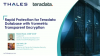 Rapid Protection for Teradata Database with Vormetric Transparent Encryption