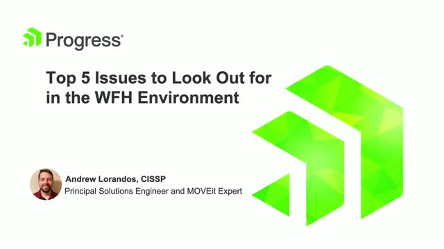 Top 5 Issues to Look Out for in the WFH Environment