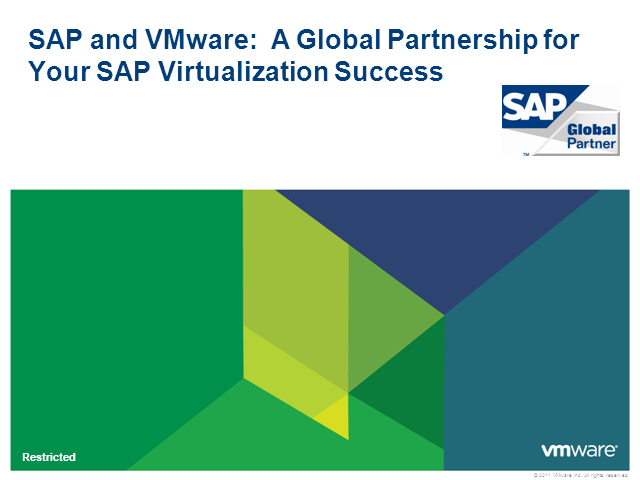 VMware and SAP: A Global Partnership for Your SAP Virtualization Success