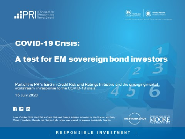 COVID-19 Crisis - A Test for EM Sovereign Bond Investors