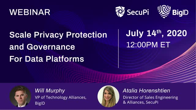 Scale Privacy Protection and Governance For Data Platforms