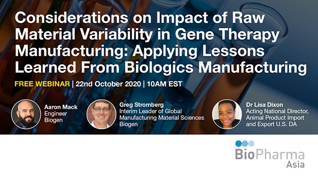 Considerations on Impact of Raw Material Variability in Gene Therapy