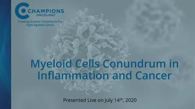 Myeloid Cell Conundrum in Inflammation and Cancer