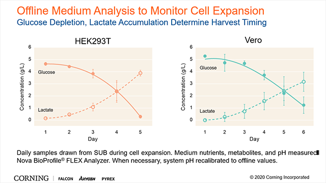 Maximizing Cell Yields Using Perfusion