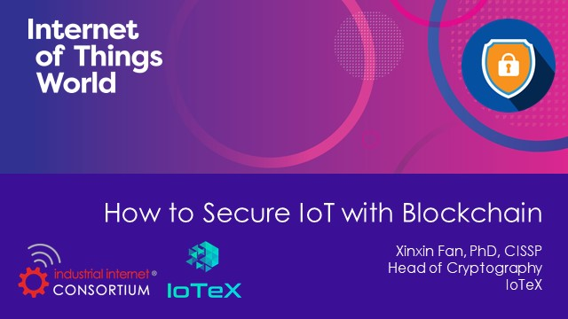 How to Secure the Internet of Things (IoT) with Blockchain