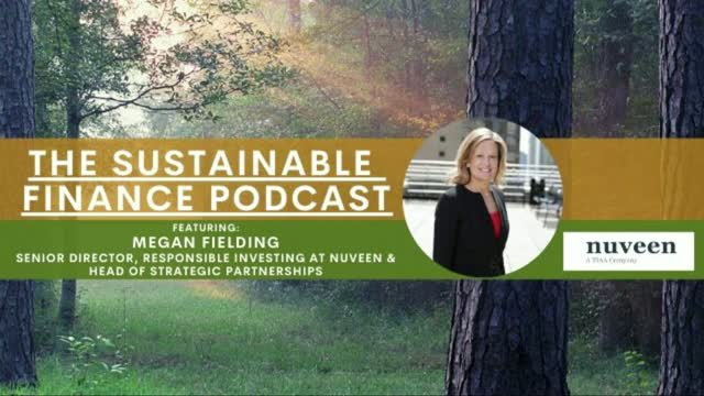 EP 91: 2019 Nuveen Survey Shows Dramatic Increase in Responsible Investing