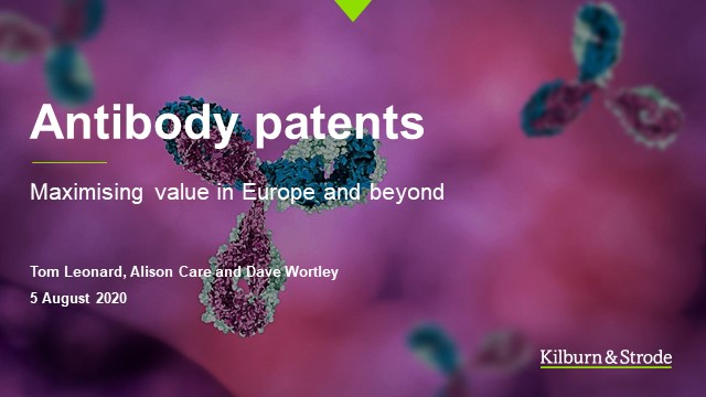 Antibody patents: maximising value in Europe and beyond