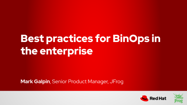 Best practices for BinOps in the enterprise