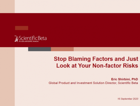 Stop blaming factors and just look at your non-factor risks