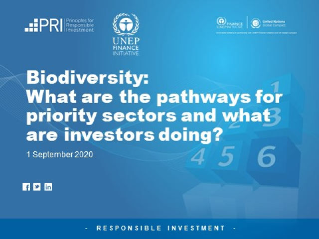 Biodiversity: What are the Pathways for Priority Sectors?