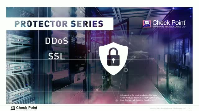 Protecting Organizations Against DDoS Attacks