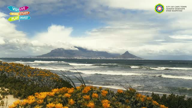 VIDEO: Towards recovery: unpacking Cape Town's tourism bounce back plan
