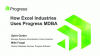 How Excel Industries Utilizes Progress MDBA