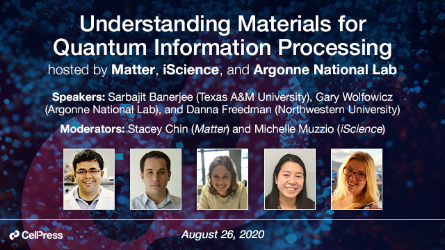 Understanding Materials for Quantum Information Processing