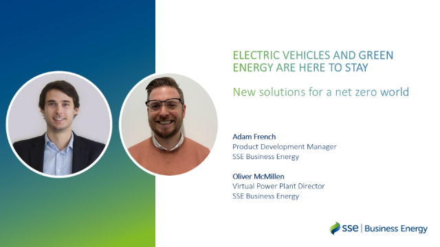 EVs and green energy are here to stay: new solutions for a net zero world