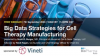 Big Data Strategies for Cell Therapy Manufacturing