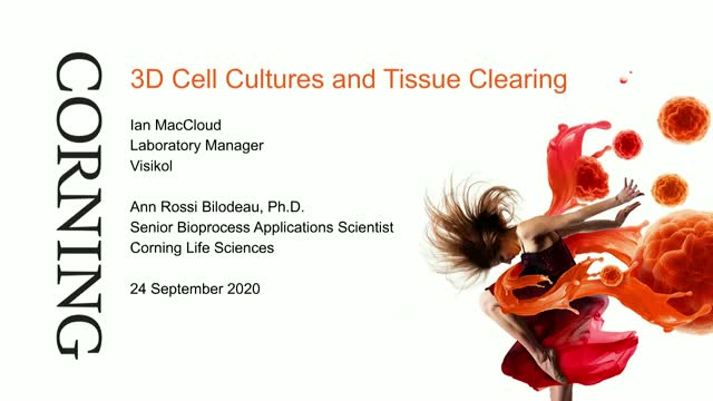 3D Cell Cultures and Tissue Clearing