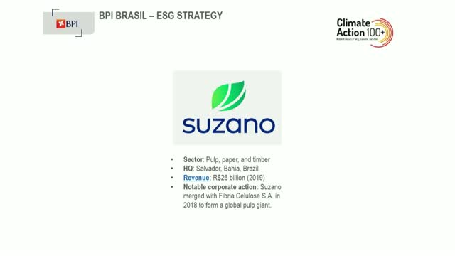 ESG Engagement with Brazilian Assets
