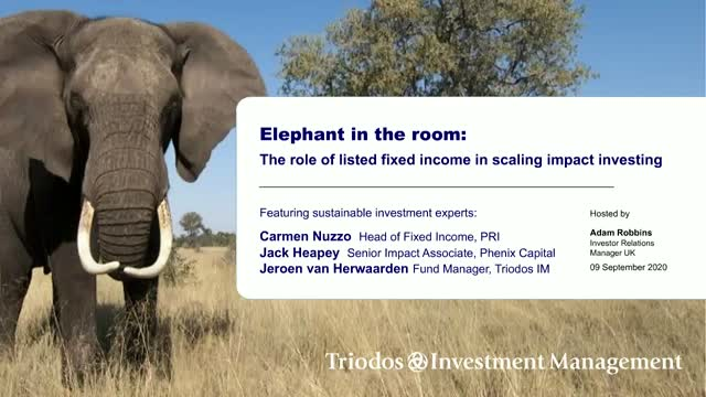 Elephant in the Room: The role of listed fixed income in scaling impact