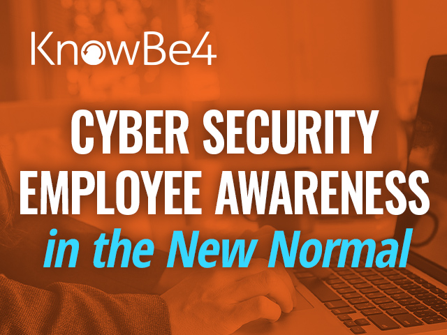 Cyber Security: Employee Awareness in the New Normal