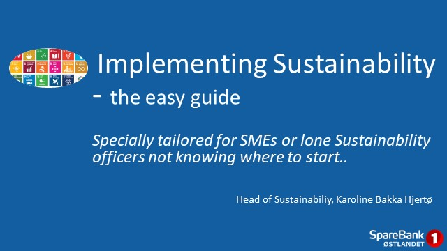 Implementing sustainability - the easy guide