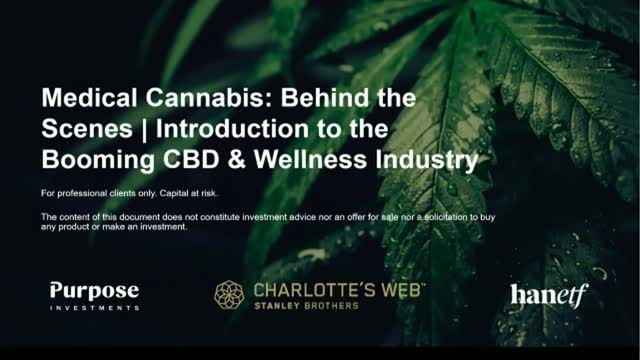 Medical Cannabis: Behind the Scenes | Introduction to the CBD Industry