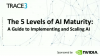 The 5 Levels of AI Maturity: A Guide to Implementing and Scaling AI