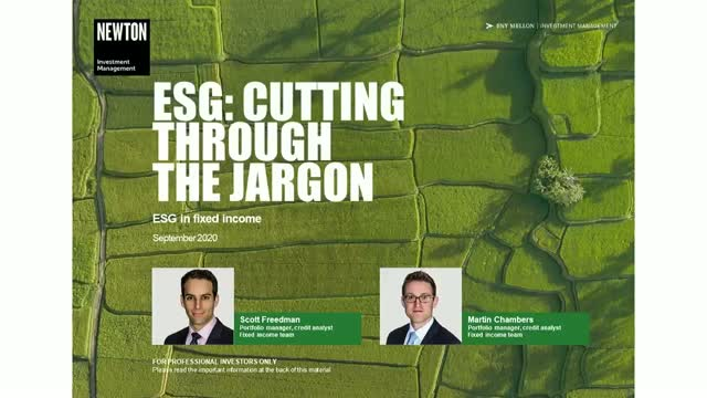 Virtual training – ESG: Cutting through the jargon (3)
