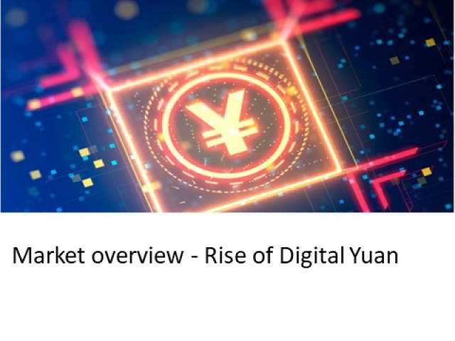 Market Overview - Rise of the Digital Yuan