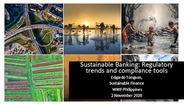 Sustainable Banking: Laying the Groundwork for Regulatory Compliance