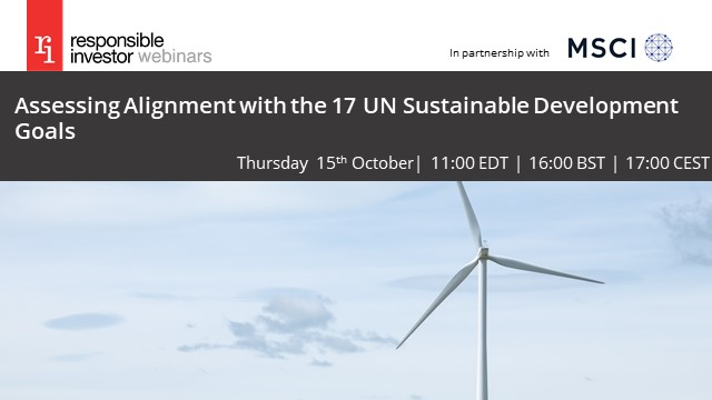 Assessing Alignment with the 17 UN Sustainable Development Goals