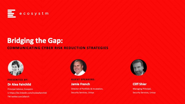 Bridging the Gap: Communicating Cyber Risk Reduction Strategies
