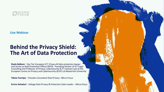 Behind the Privacy Shield:The Art of Data Protection