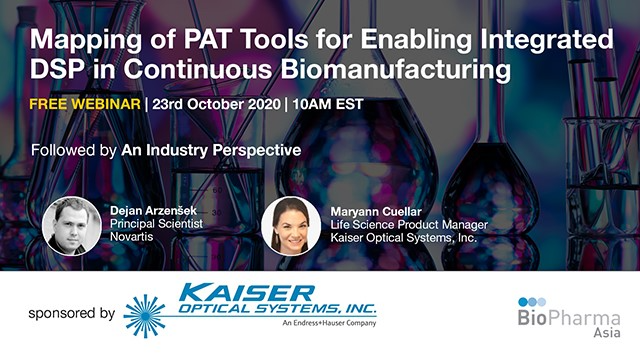 Mapping of PAT Tools for Enabling Integrated DSP in Continuous Biomanufacturing