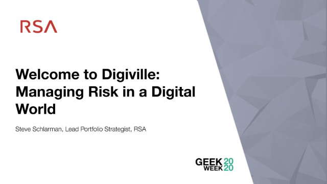 Welcome to Digiville: Managing Risk in a Digital World